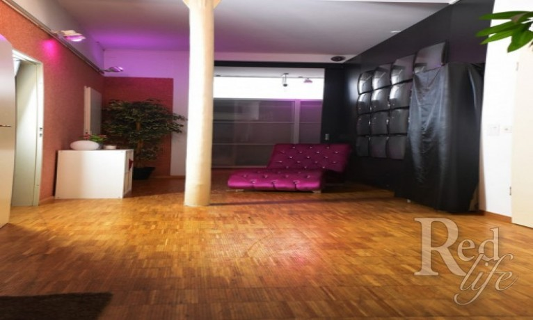 basels-grosster-salon-der-schweiz-rent-free-big-2