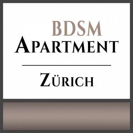 einzigartige-bdsm-zimmer-vermietet-zurich-schweiz-big-2