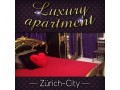 private-luxuswohnung-schon-lange-in-zurich-zu-vermieten-small-2