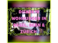 private-mietwohnungen-in-bern-zurich-basel-small-2
