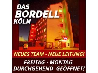 Zimmer zu vermieten für Damen und Trans in Köln Deutschland