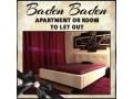 zimmer-oder-apartment-fur-zuverlassige-damen-zu-vermieten-in-baden-small-0