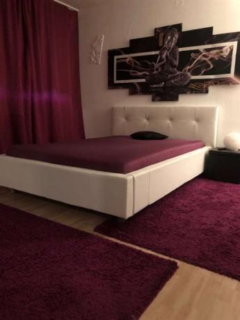 zimmer-oder-apartment-fur-zuverlassige-damen-zu-vermieten-in-baden-big-2