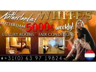 Escorts wanted in Rotterdam LUXURY  ROOMS AVAILABLE