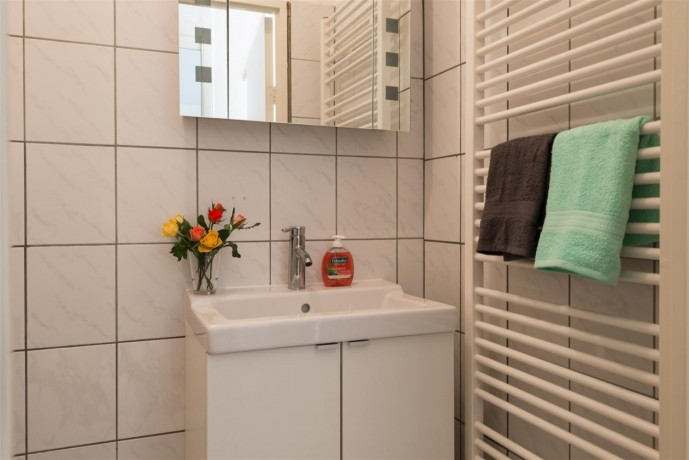 1-bedroom-appartment-in-amsterdam-big-3